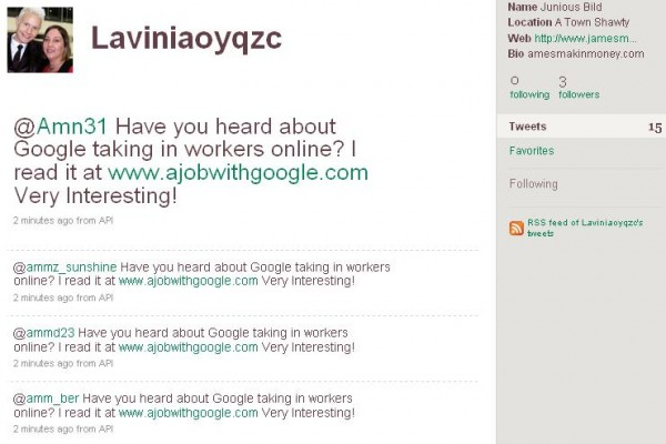 Junious Bild Laviniaoyqzc on Twitter 1251795544105 600x400 New Twitter spam bomb offers A Job With Google