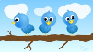 twitter birds 300x170 Twitter Labs on the Way