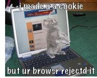 catcookie-r