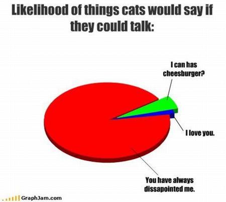 cattalk