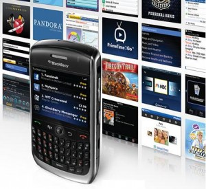 rim blackberry app world 300x275 RIM brings Flash and BlackBerry App World to India