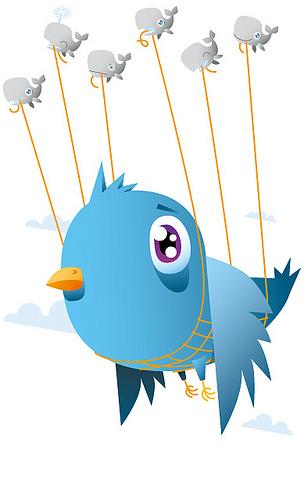 Twitter Backup Failure Sent the Site Crashing