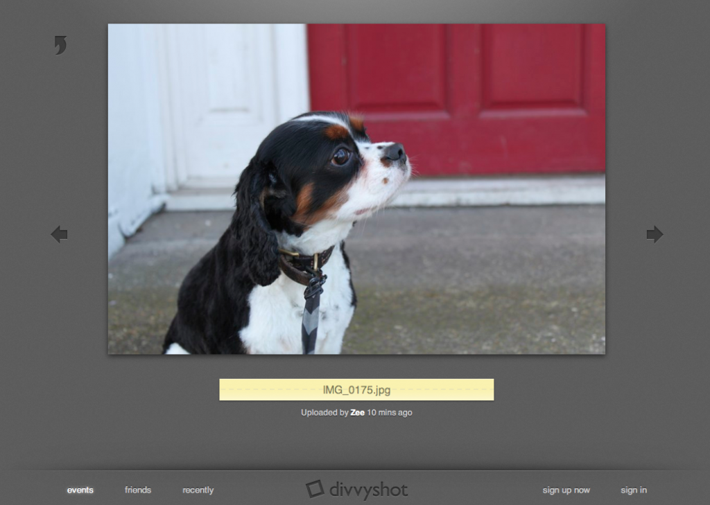 Picture 24 1024x729 Divvyshot Might Just Be The Most Gorgeous Photo Sharing Site Yet. [Updated]