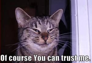 trust me 300x204 In Social Media We Trust?