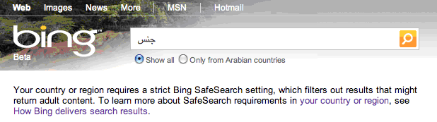 bing1 Bing bans sex in the Middle East