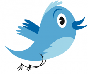 twitter bird 300x253 Now This Makes Sense. Or Does It? Twitter Plans To Order Search Results By Tweet Popularity