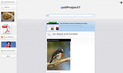 search large 500x298 You got a project? Try gotProject