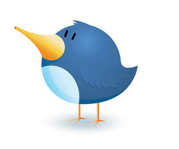 bird Twitter Growing By 300,000 New Users A Day