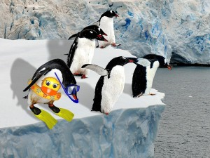 0803280512131penguin s 300x225 MBC Enters the Mobile Apps Market With Cold Feet