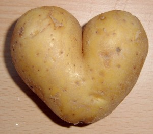 Potato heart mutation1 300x262 Hot Potato will Scrobble your World
