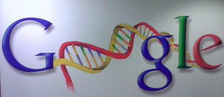 google dna Why Google Updated Their Index: Content is blossoming, Users Expected More