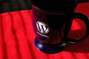 3590656003 2716d2d5e1 b 300x199 Its WordPress update time. 3.0.1 is now live.