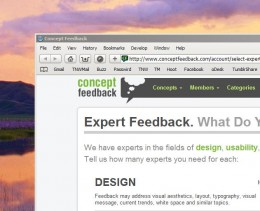 ef 260x211 Does your website suck? Get some Expert Feedback.