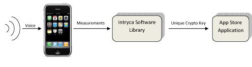 Intryca Security Process