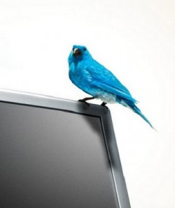 05.Twitter bird escaped 253x300 Twitter introduces the Tweet Button. Is TweetMeme being left in the cold?