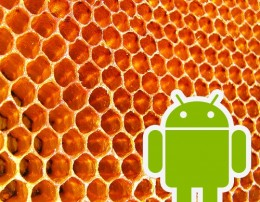 2268587409 45b9f80b0e 260x202 Android 3.1/3.2 To Be Codenamed Honeycomb?