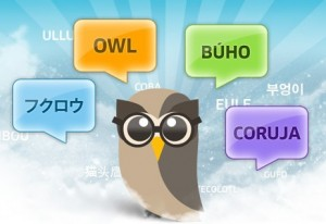 header e1282949887935 300x206 Hootsuite needs your lingua franca: Help with crowd sourced translation of Hootsuite