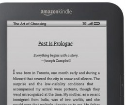 kindle 260x216 Amazons New Kindle Is A Smashing Success