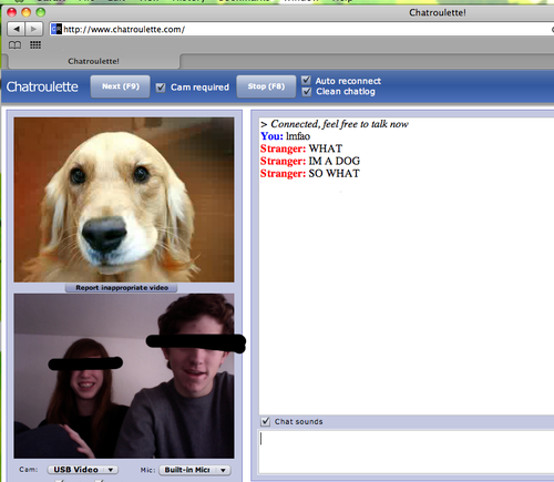 "Chatroulette has gone offline. Holding page says ""The experiment is over"""