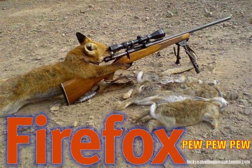 tumblr l79trkqptd1qanb21o1 500 Firefox. Literally.