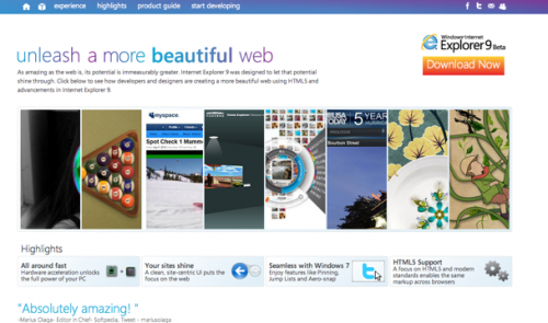 Screenshot of IE 9