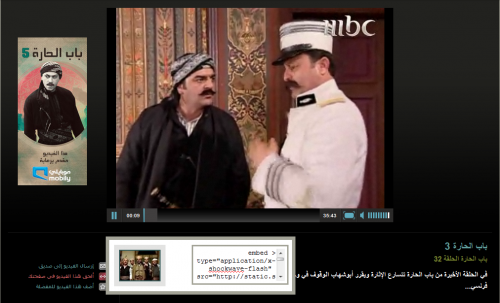 Screenshot of Video Interface with Embed option showing