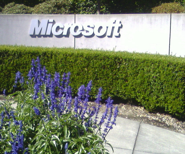 Microsoft: Who Poked the Sleeping Dragon?