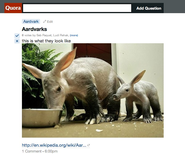 Aardvarks Quora adds ability to insert images, no longer just a Q&A site.