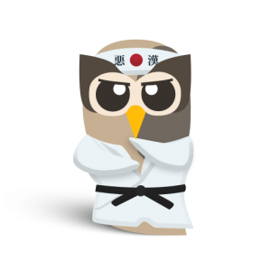 512px owly karate 300x300 How To: 6 Easy Tips to Become a HootSuite Ninja