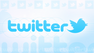 new bird 534 300x171 Twitter Advertising: A Complete Guide
