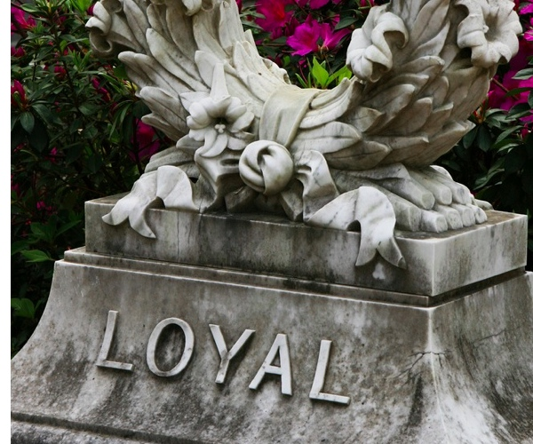 Is Loyalty Dead? Unlocking its secrets with social media