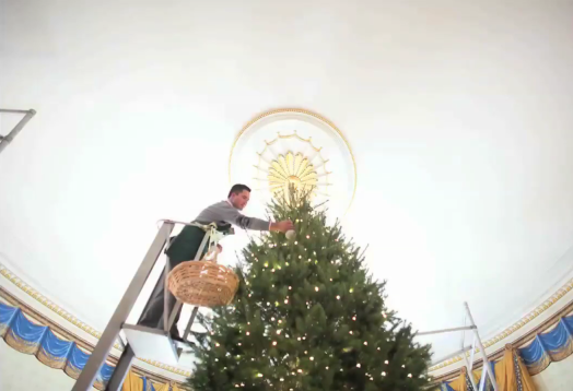 Time to set up the Christmas Tree, White House Style