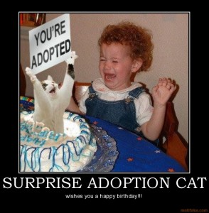 surprise adoption cat cat adoption lolcat demotivational poster 1220655060 294x300 10 Start Ups Youve Definitely Never Heard Of