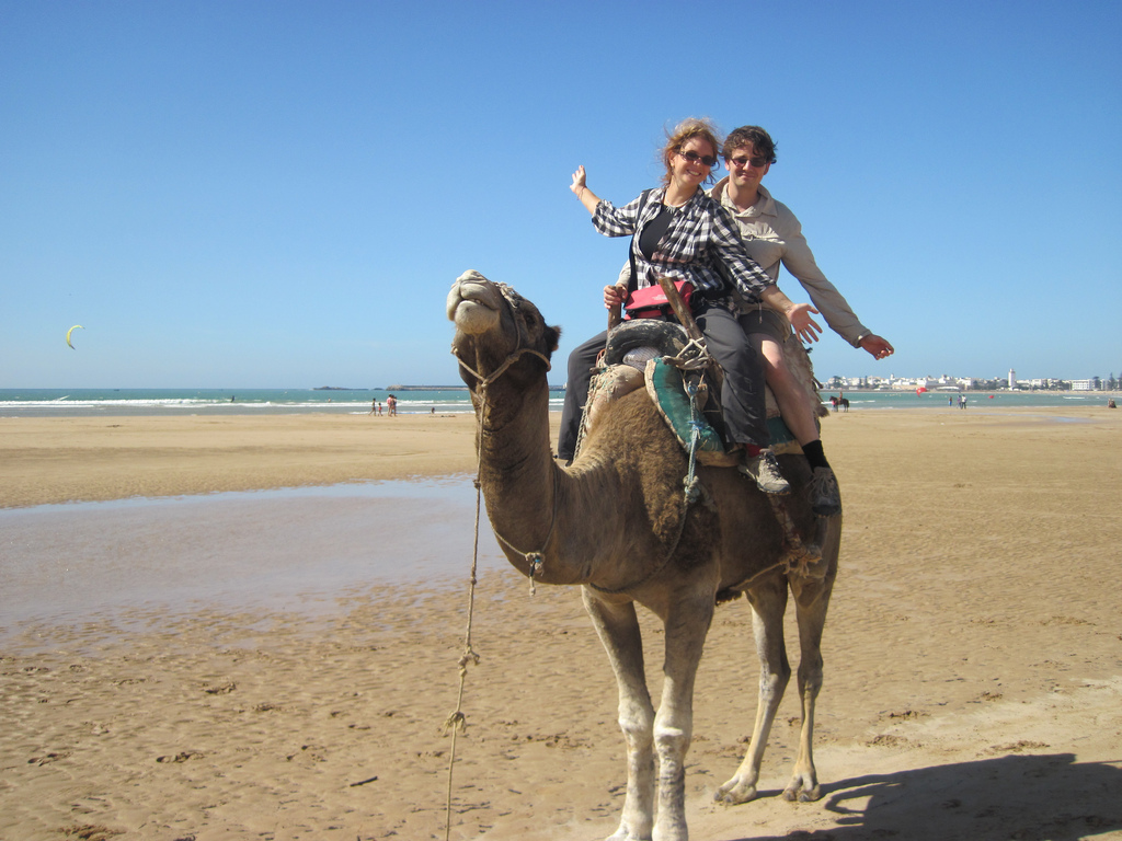 on a camel Lanyrd launches to change the conference landscape using Twitter