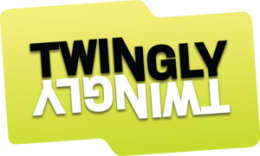 twinglylogotypstor 300x181 260x156 Twinglys FriendFeed for business moves into corporate microblogging