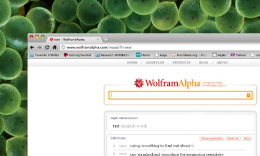 wolphram 260x156 Round Up of 5 Cool APIs for Developers