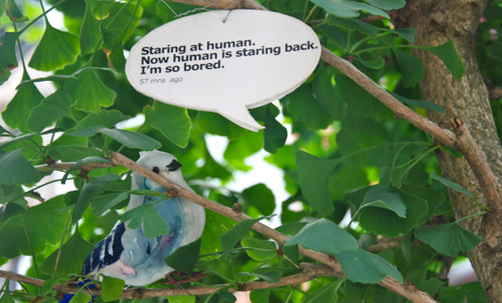 Birdsong for WP7 is Twitter nirvana