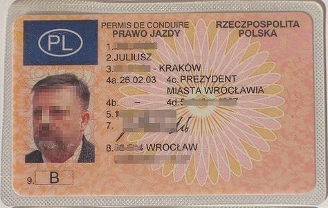 How to get away with speeding: use a Polish license