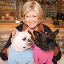 Martha Stewart french bulldog 220x220 Early birds, early adopters: The best seniors on Twitter