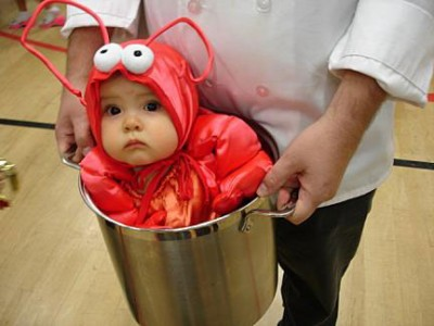 baby lobster 400x300 Mark Zuckerberg announces hes only eating meat he kills himself