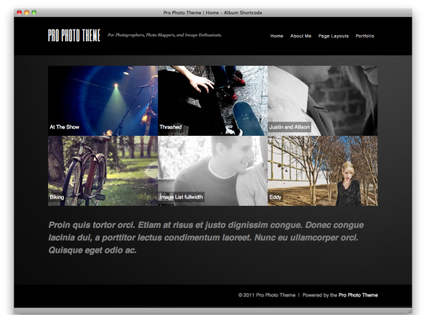 pro photo theme home 620x459 Photo buffs, were giving you this premium WordPress theme for free