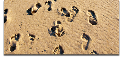 footprints The CEO of ME: 10 Personal Online Branding Tips