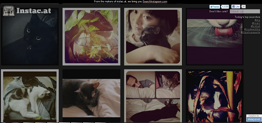instacat The Complete List of Top Instagram Apps