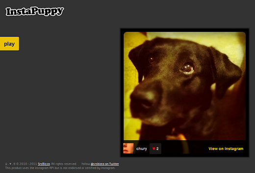 instapuppy The Complete List of Top Instagram Apps