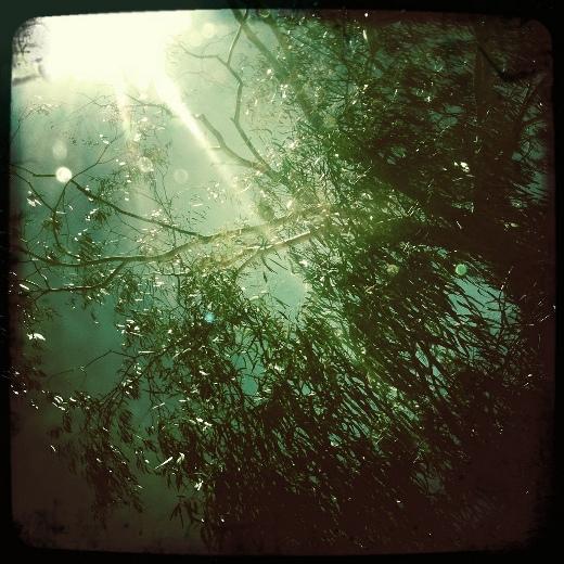 Alexander Kesselaar's dreamlike photo shot - Hipstamatic