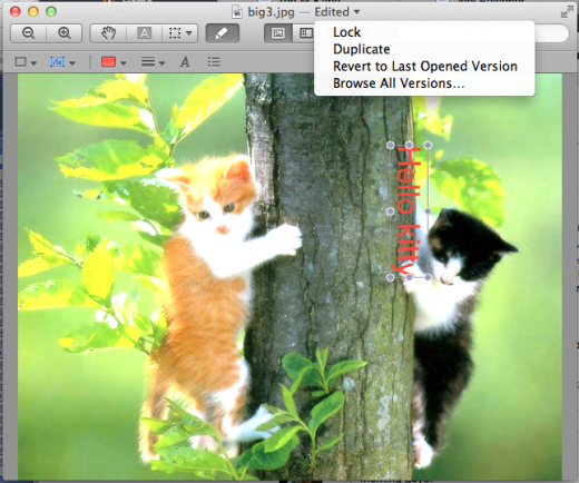 versions preview 520x434 TNW Review: OS X Lion