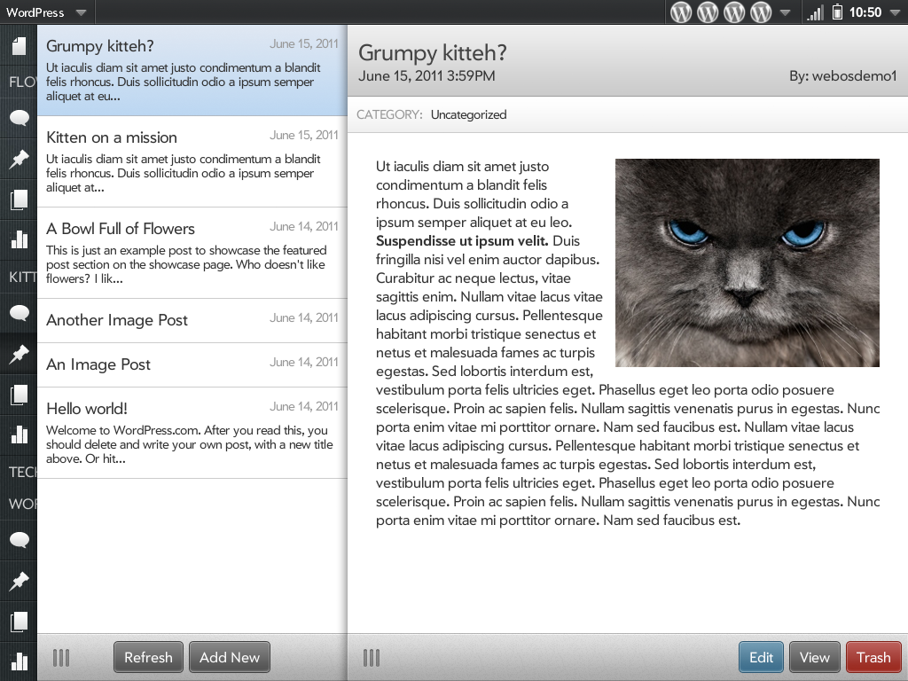WordPress launches its first full WYSIWYG app - for WebOS