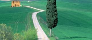 Country_Road_Tuscany_Italy
