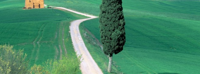 Country_Road_Tuscany_Italy