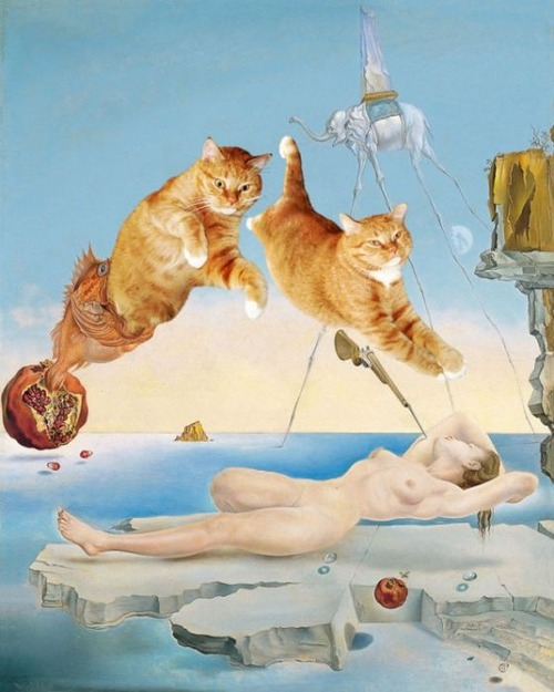 f4784c8b s Revisiting Art History...The greatest works of art with Cats!